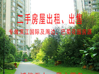 滨江国际清水房出售