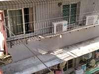 出租后山2室1厅1卫60平米750元/月住宅